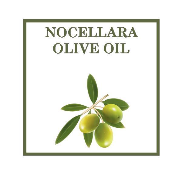 Nocellara
